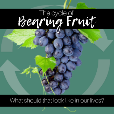 The Cycle of Bearing Fruit